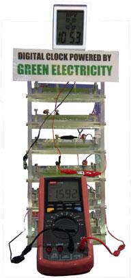 Bio-photovoltaics